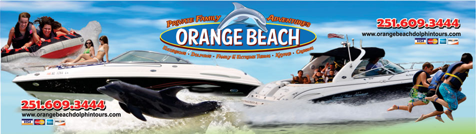 Orange Beach Dolphin Tours - Orange Beach Dolphin Cruises